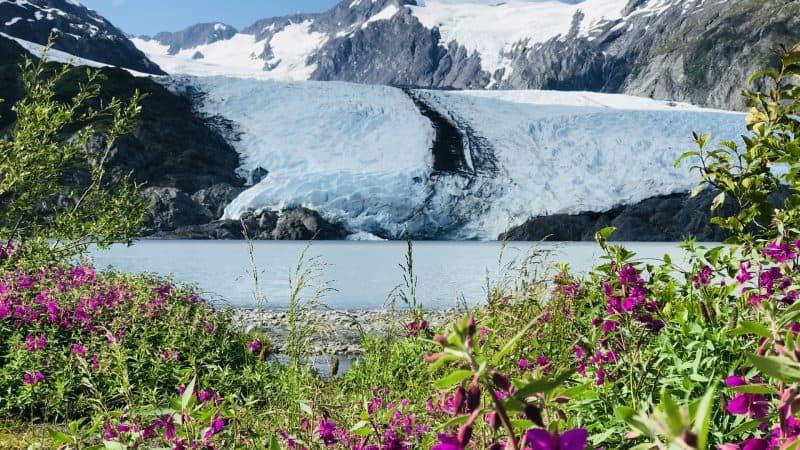 Viaggio in Alaska: Portage Pass