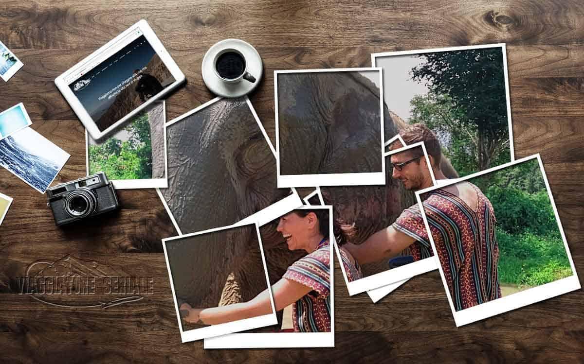 La Polaroid di Distratti da Mondo