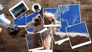 La Polaroid di Annalisa e Giuseppe